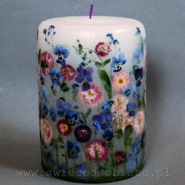 świeca z niebieskimi bratkami i stokrotkami ogrodowymi oraz polnymi, duża