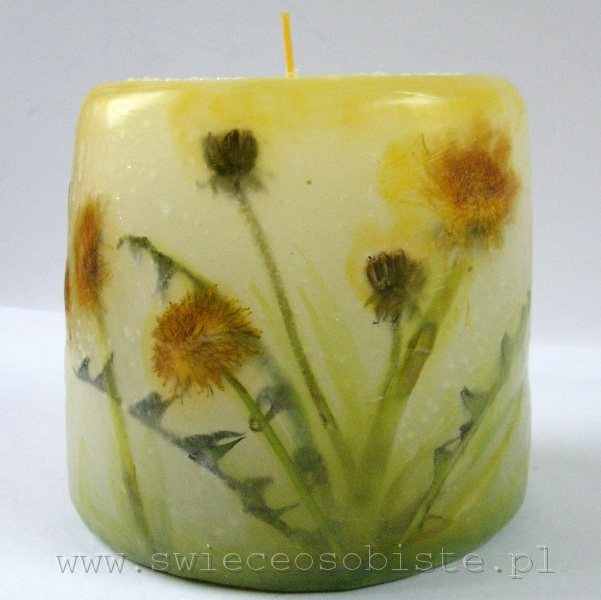 candle with dandelion, small
