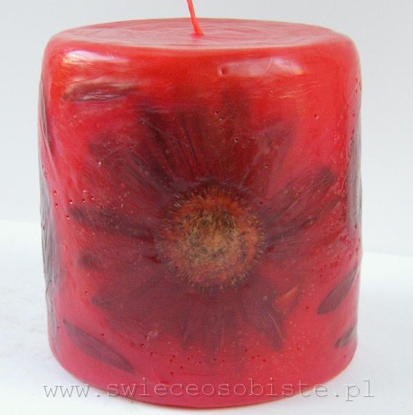 jasnoczerwona świeca z gerberą, mała