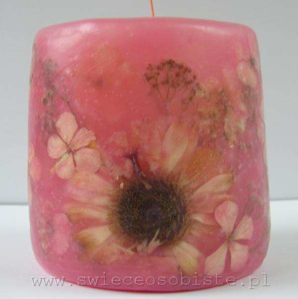 różowa świeca z gerberą i floksami, mała