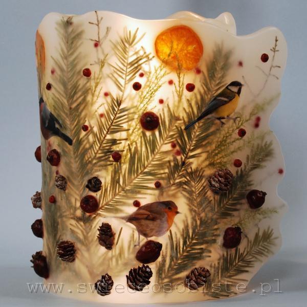 Lampion parafinowy z suszoną daglezją, szyszkami, pomarańczami, owocami dzikiej róży i ostrokrzewu oraz papierowymi ptaszkami, wysokość ok. 22 cm, średnica ok. 16 cm