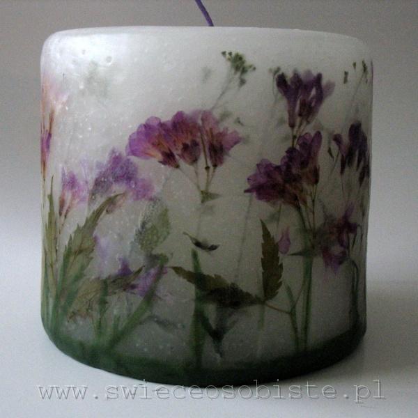 świeca łąkowa z fioletowymi kwiatkami, mała