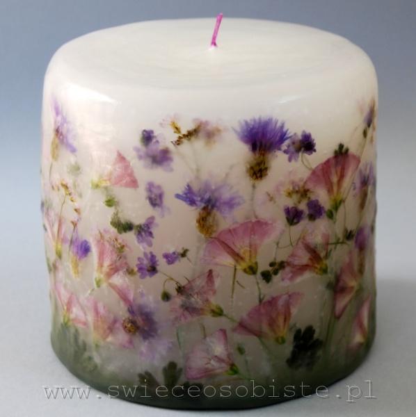 Świeca łąkowa w tonacji fioletowej, mała