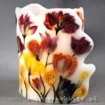 Lampion parafinowy z suszonymi tulipanami, wysokość 23 cm, średnica 16-17 cm plus skrzydło