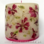 candle with pink geranium, small