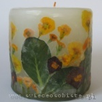 candle with primeroses, small