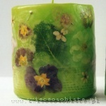 light green candle with primeroses, small