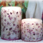 Candles with flowers of purple crabapple, small, big