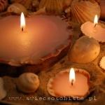 warsztaty tworzenia świec ozdobnych, świece w muszlach