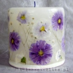 candle with violet primeroses, small