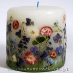 candle with blue pansies and pink daisies, small