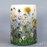 candle of the meadow with forget-me-nots, daisies and dandelions, big
