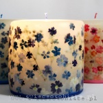 Candles with verbena and hydrangea, small