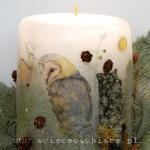 Candle with owl, big