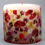 Candle with red geranium, jasmine and verbena, small
