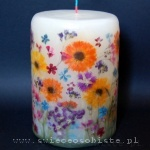 "candle ""Crazy August"", big"