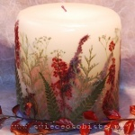 autumn candle of the forest with heather, small