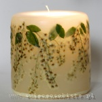 Candle with hackberry, small