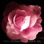 warsztaty świec ozdobnych, wywijanych - róża, świece-kwiaty