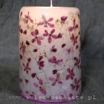 candle with flowers of purple crabapple, big