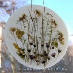"""obrazek parafinowy do powieszenia na oknie lub podświetlenia żarówką ledową, o średnicy ok. 18 cm, z roślinami łąkowymi, """"zielnik"""""""